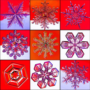 snowflakes15