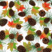 Pinecones, pine needles, & leaves