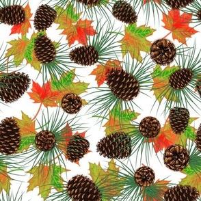 Pinecones, pine needles, & leaves