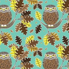 Owl and Oak blue green
