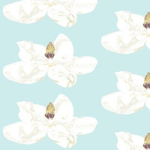 Magnolia Blossoms White on Paris blue background