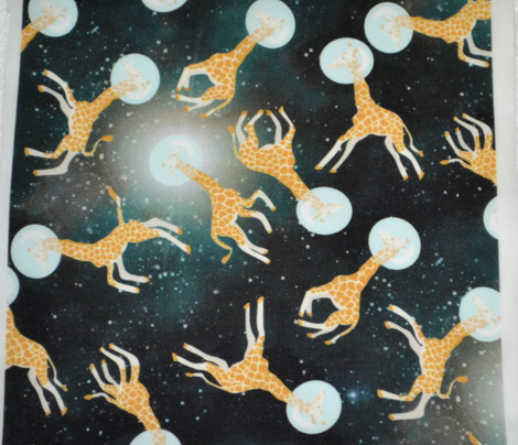 Giraffes in Space