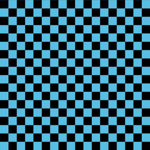 Checks - 1 inch (2.54cm) - Black (#000000) & Light Blue (#57BEE4)