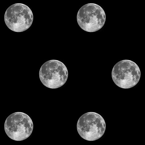 B&W moon polkadot