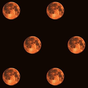 harvest moon polkadot