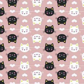 Black and white cats in rows on rose pink