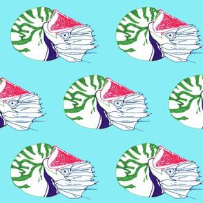 Rrnautiluscolorocean_shop_thumb