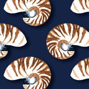 Rnautilusindigo_shop_thumb