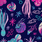 Rcephalopods-01_shop_thumb