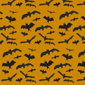 Batty Bats Orange