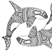 Orca-01