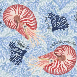 Watercolor Nautilus with Coral