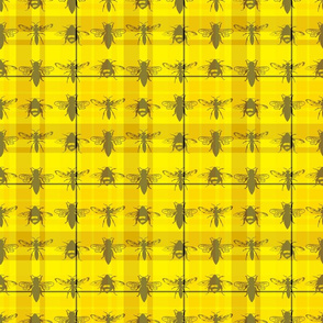 Tartan Bees (and Wasps!)