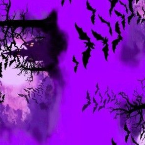 image bats
