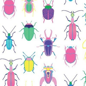 pop art beetles on white