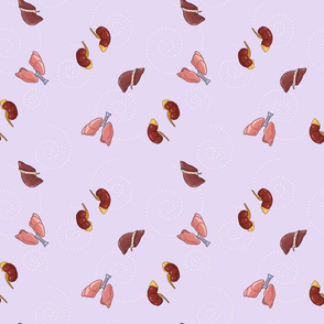 Liver, Lungs and Kidney in Lilac