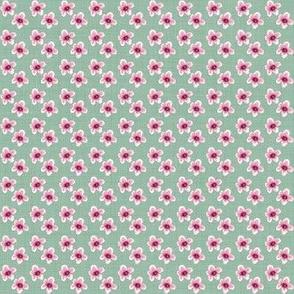 Sweet Annie Blossoms