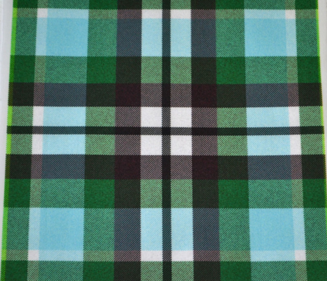 Aqua and Olive Plaid
