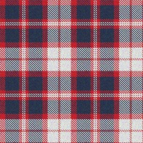 Red, White and Blue Plaid 2