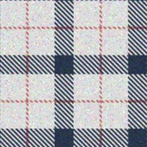 Pink, White and Blue Plaid 1