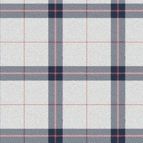 Pink, White and Blue Plaid 2