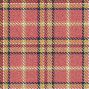 Peach, Cranberry and Lemon Plaid 1