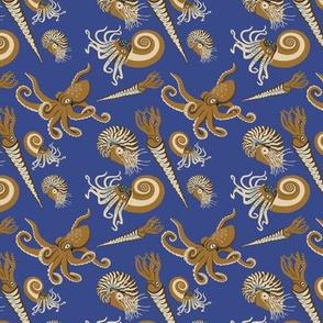 Cephalopods Squids Octopus
