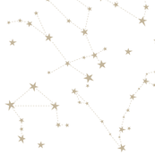 stars in the zodiac constellations