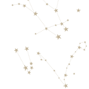 stars zodiac constellations