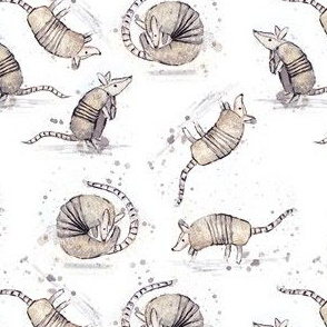 Armadillos On a Roll