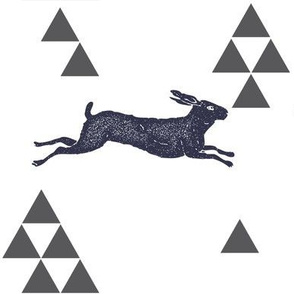 Geometric Hare in Navy