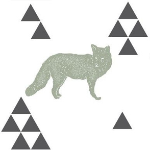 Geometric Fox in Sage