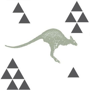 Geometric Kangaroo in Sage