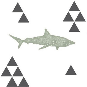 Geometric Shark in Sage