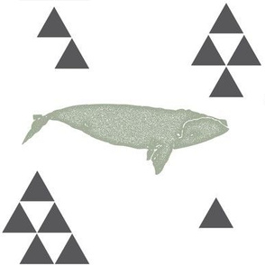 Geometric Whale in Sage