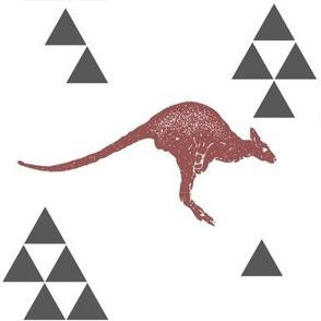 Geometric Kangaroo in Wine