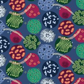 Microbe Circles