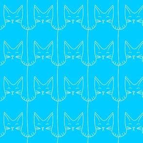 kitties (blue background)
