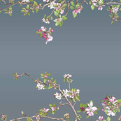 Apple Blossom Botanical on Vintage Blue
