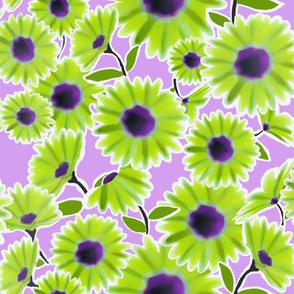 Lime Green Daisy Flowers on Purple