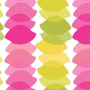 Rows of Lemons brights