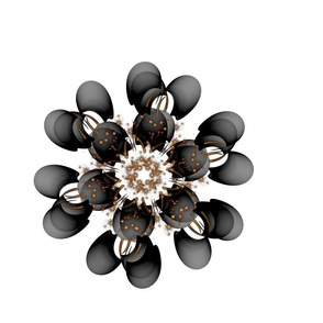 black_and_gold_flower