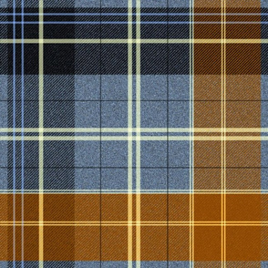 School Plaid ~ Head Of The Class