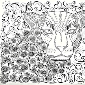 Leopard zen