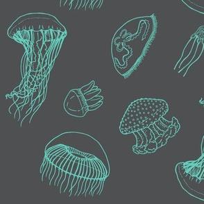 jellyfish grey + teal