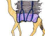 Camel_thumb