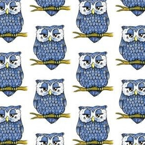 Smaller Blue Owl