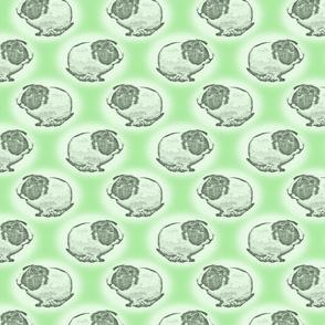 Guinea pig dots - green