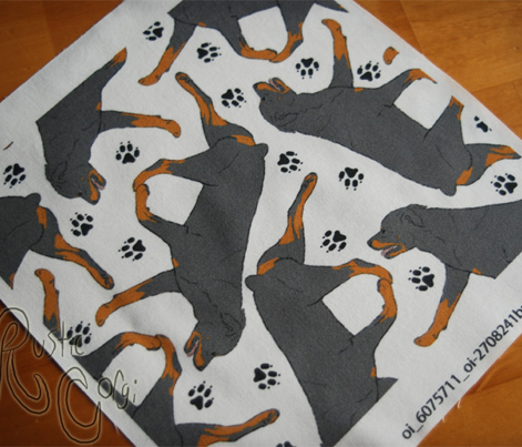 Trotting Rottweiler and paw prints - white