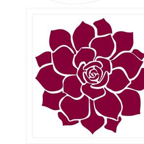 Succulent_Burgundy
